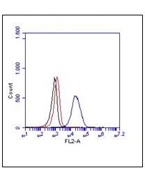 TLR2, Human, mAb TL2.1, FITC
